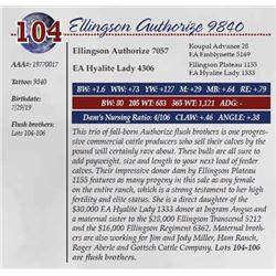ELLINGSON AUTHORIZE 9840