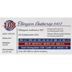 ELLINGSON AUTHORIZE 0417