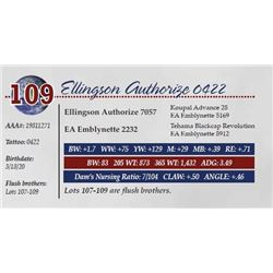 ELLINGSON AUTHORIZE 0422