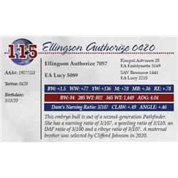 ELLINGSON AUTHORIZE 0420