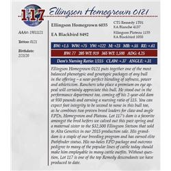 ELLINGSON HOMEGROWN 0121