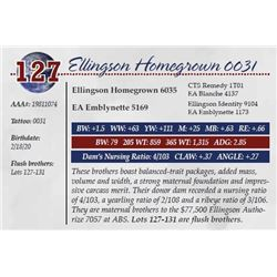 ELLINGSON HOMEGROWN 0031