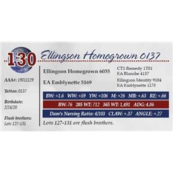 ELLINGSON HOMEGROWN 0137