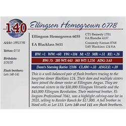 ELLINGSON HOMEGROWN 0778