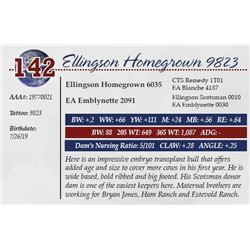 ELLINGSON HOMEGROWN 9823