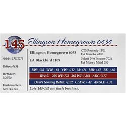 ELLINGSON HOMEGROWN 0434