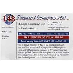ELLINGSON HOMEGROWN 0425