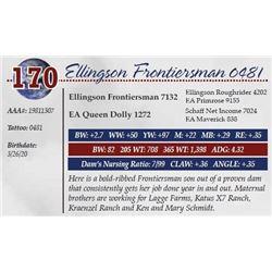 ELLINGSON FRONTIERSMAN 0481
