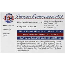 ELLINGSON FRONTIERSMAN 0629