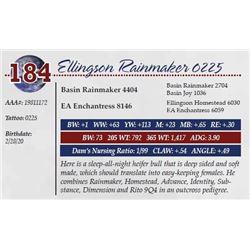 ELLINGSON RAINMAKER 0225