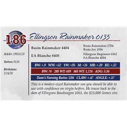 ELLINGSON RAINMAKER 0135