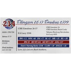 ELLINGSON 26 17 EMULOUS 0779