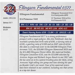 ELLINGSON FUNDAMENTAL 0577
