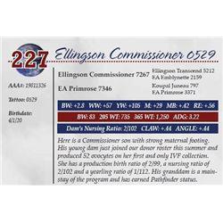 ELLINGSON COMMISSIONER 0529