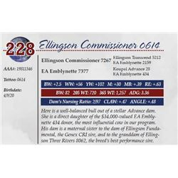 ELLINGSON COMMISSIONER 0614