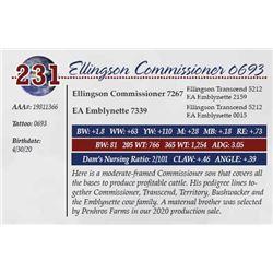 ELLINGSON COMMISSIONER 0693