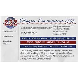 ELLINGSON COMMISSIONER 0563