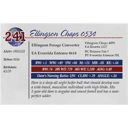 ELLINGSON CHAPS 0534