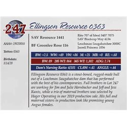ELLINGSON RESOURCE 0363