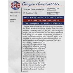 ELLINGSON HOMESTEAD 0421