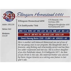 ELLINGSON HOMESTEAD 0441