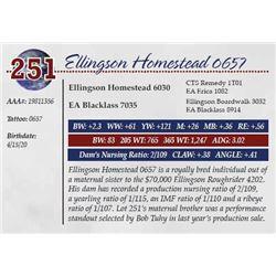 ELLINGSON HOMESTEAD 0657