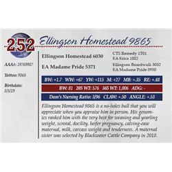 ELLINGSON HOMESTEAD 9865