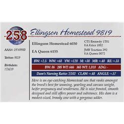 ELLINGSON HOMESTEAD 9819
