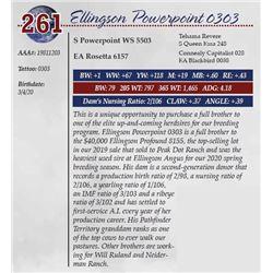 ELLINGSON POWERPOINT 0303