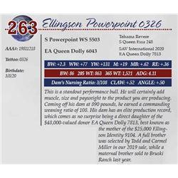 ELLINGSON POWERPOINT 0326