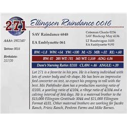 ELLINGSON RAINDANCE 0016