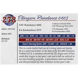 ELLINGSON RAINDANCE 0405