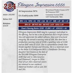 ELLINGSON IMPRESSION 0660