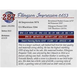 ELLINGSON IMPRESSION 0653