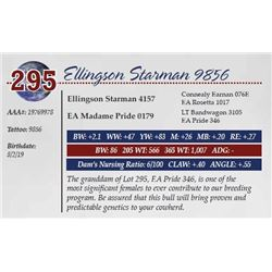 ELLINGSON STARMAN 9856