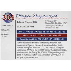 ELLINGSON NIAGARA 0504