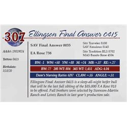 ELLINGSON FINAL ANSWER 0415