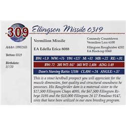 ELLINGSON MISSILE 0319
