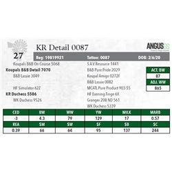 KR DETAIL 0087