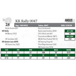 KR RALLY 0047