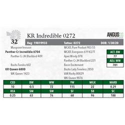 KR INCREDIBLE 0272