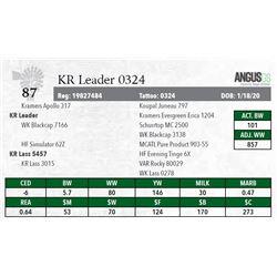 KR LEADER 0324