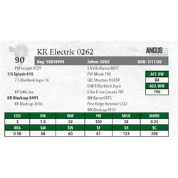 KR ELECTRIC 0262