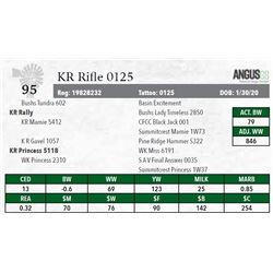 KR RIFLE 0125