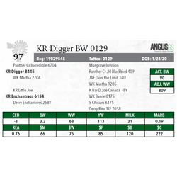 KR DIGGER BW 0129