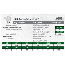 KR INCREDIBLE 0372