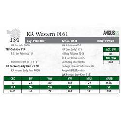 KR WESTERN 0161
