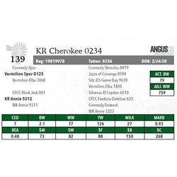 KR CHEROKEE 0234