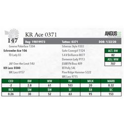 KR ACE 0371