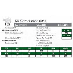KR CORNERSTONE 0054